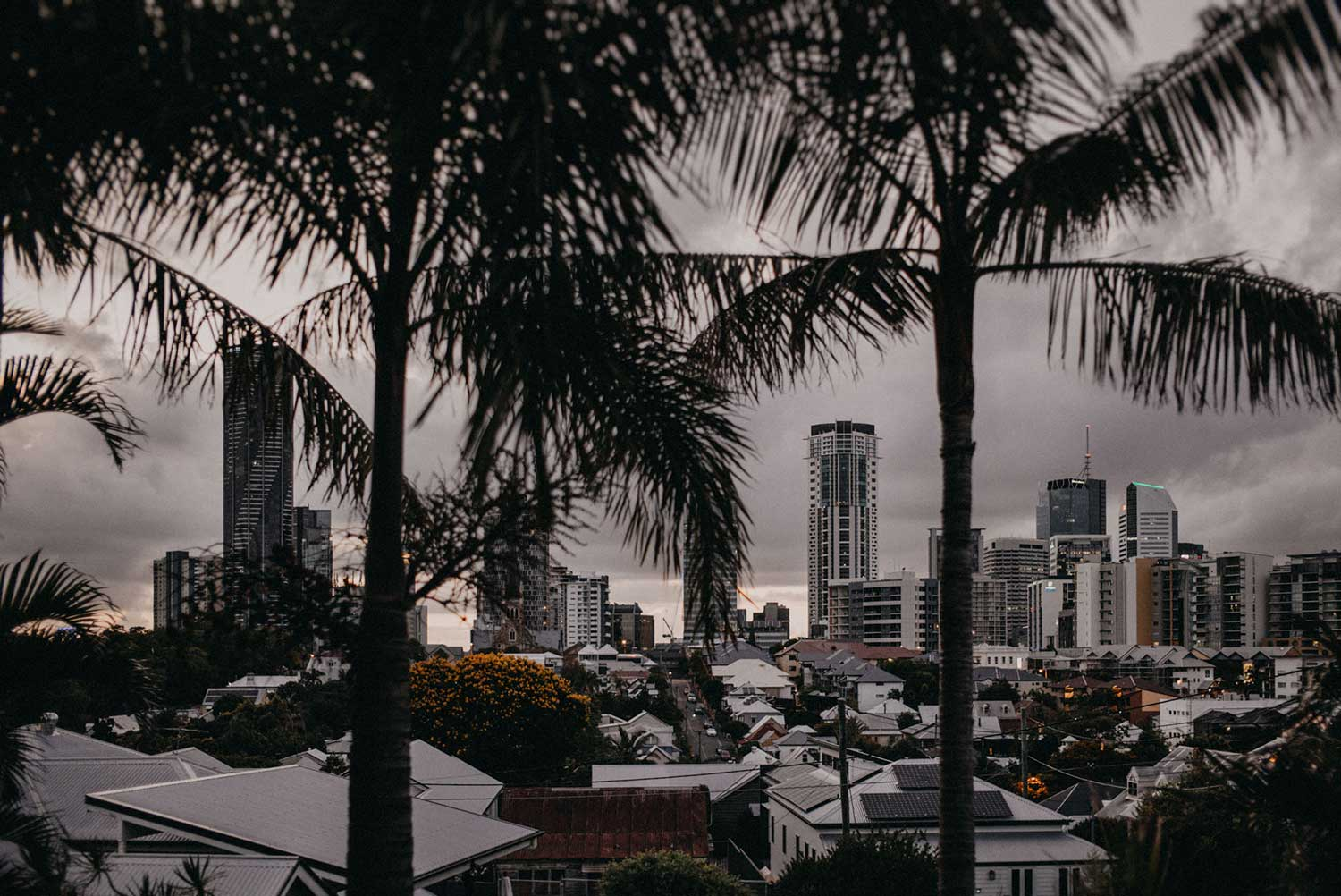 View of Brisbane city, Australia through the palm trees from the window of apartment at sunset